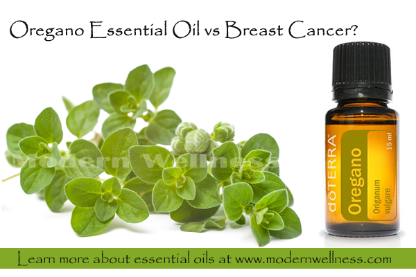 Oregano vs breast cancer