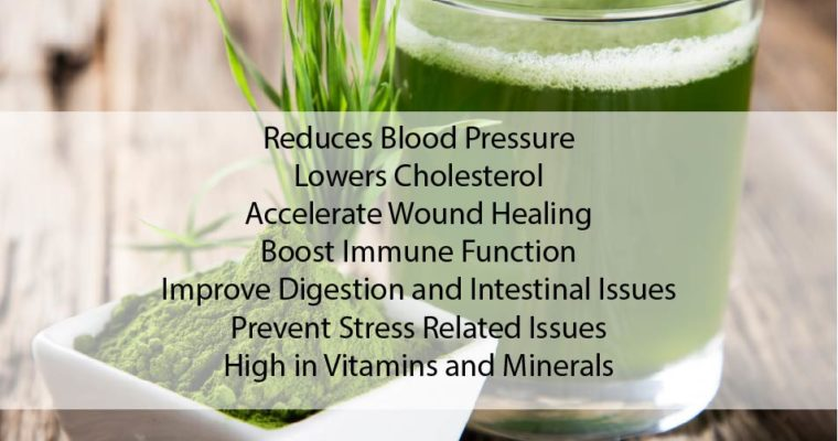 Top 7 Benefits of Chlorella