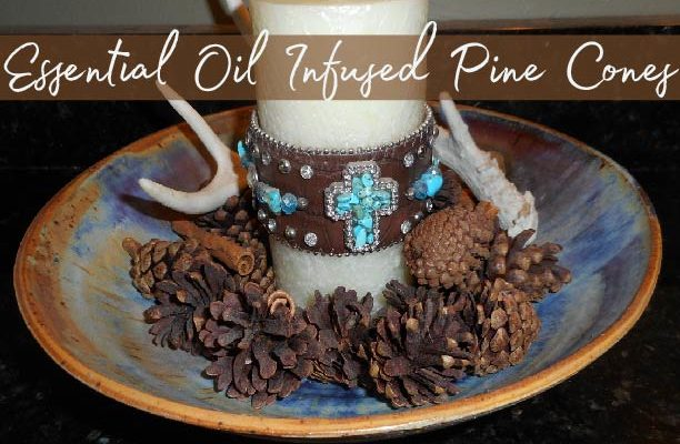 Essential Oil Infused Pine Cones