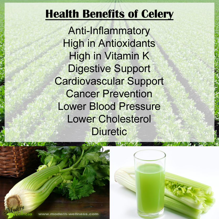 Health Benefits of Celery